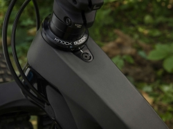 TREK FUEL EX 9.7  Matte Raw Carbon 2021, fotografie 1/10